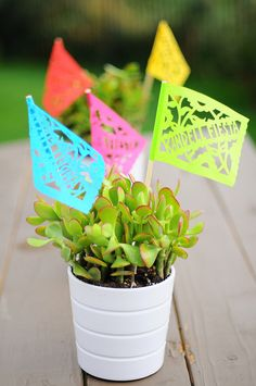 Fiesta; table scape.  I love the succulents and paper flags.