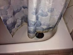 Tutto cominciò...: Materassi, scantinati e stanza da bagno con muffa:...