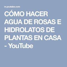 CÓMO HACER AGUA DE ROSAS E HIDROLATOS DE PLANTAS EN CASA - YouTube