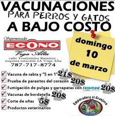 Vacunaciones para perros y gatos @ Vega Alta