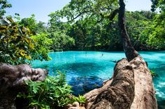 Blue Lagoon, Port Antonio Picture: one of the most relaxing places on the planet take a trip with us Sweet Jamaica Tours & Travel. - Check out Tripadvisor members' 538 candid photos and videos of Blue Lagoon Places To Travel, Places To See, Travel Destinations, Travel Trip, Vanuatu, Blue Lagoon Jamaica, Dream Vacations, Vacation Spots, Rafting