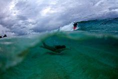 photo surf wave surfing NY hawaii long beach ny will skudin nysea nysea surf lbny