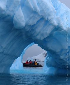 Antarctica! Take a cruise from South America...!!