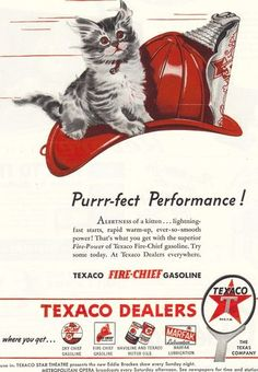 VINTAGE, TEXACO AD, CAT ON A HAT, FIRE-CHIEF HAT, 1946 -by Easychair 1953 on Ebay