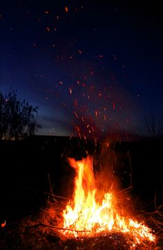Bon Fire, one of the best parts about fall! Remember when we would take you and Adam on the hayrides & have a bon fire when you were younger?  One of my favorite parts of Autumn!
