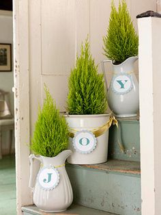 Step-by-step Spell out holiday greetings on tree containers that climb the stairs. We made paper letter ornaments for white ironstone pitchers and pots and planted a lacy Goldcrest cypress tree in each.