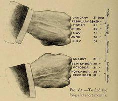 ¡Aprendiendo el calendario de manera sencilla con Camille Flammarion! | Matemolivares