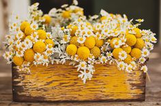 I love the old painted box that brings out the yellow in the daisies and craspedia!