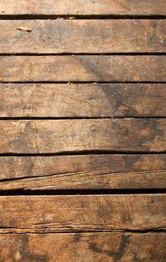 horizontal wood background. Plain Wood Tree For Horizontal Wood Background