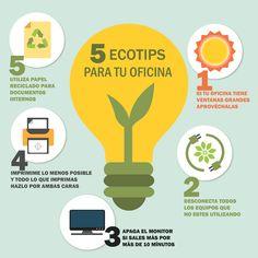 5 Ecotips para tu oficina