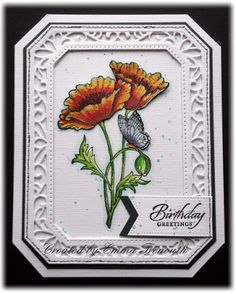Floral Birthday card, chocolate baroque pretty poppy stamps, stampin up wetlands, sue wilson noble dies, wink of stella pens Flower Birthday Cards, Fineliner Pens, Sue Wilson, Wink Of Stella, Distress Ink, My Stamp, Baroque, Poppy, Stampin Up