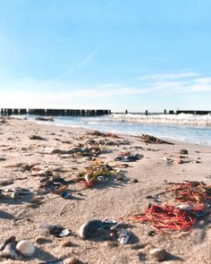 Therapie Sylt Herren T-Shirt Spruch Strand Urlaub Nordsee Angeln Surfen Wandern