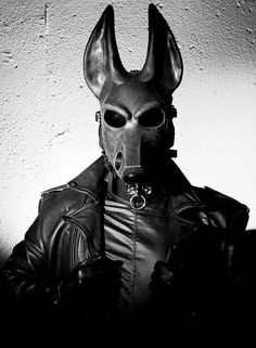 mask of Anubus with rubber and leather bdsm gear Gas Mask Art, Masks Art, Gas Masks, Caricatures, Emo, Dog Mask, Leather Mask, Leather Jacket, Puppy Play