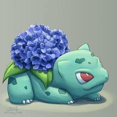 Handsome hydrangea
