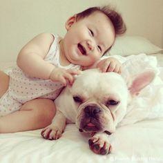 French-Bulldog-Reno-20140808 -01 #frenchbulldog #frenchie #dog #daughter #babygirl #フレンチブルドッグ