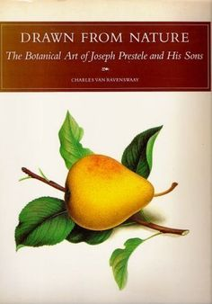 DRAWN FROM NATURE: The Botanical Art of (Iowan) Joseph Prestele and His Sons by Charles Van Ravenswaay 1984 - this book can be had used through Amazon for less $15. #Iowa #illustration #fruit #vegetable #lithograph #book #inspiration #IA #Amana
