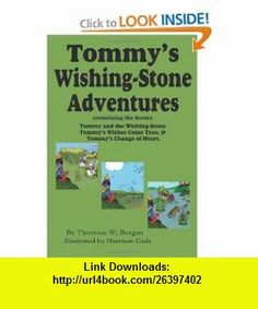 Firestorm 2099 9780439060356 john peel isbn 10 0439060354 tommys wishing stone adventures the wishing stonewishes come true change fandeluxe Epub