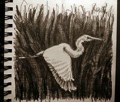 Bird sketch two