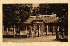 Königsberg, Ostpr., Königsberger Tiergarten, Kamelhaus