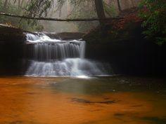 Creation Falls Clifty Wilderness Daniel Boone National Forest Kentucky