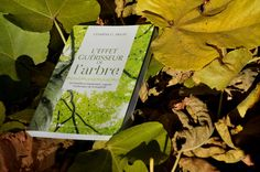 """A la découverte du livre """"l'effet guérisseur de l'arbre"""" de CLEMENS G. ARVAY"""