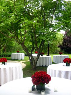 red center pieces ~ outdoor wedding party