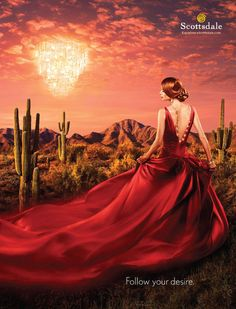 Scottsdale-Follow Your Desires