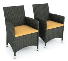 Sonax Cascade All Weather Wicker Chairs - Set of 2 - Wicker Furniture at Hayneedle