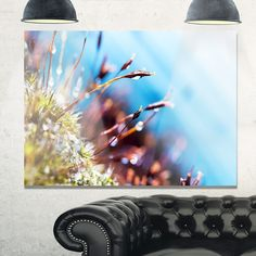 Abstract Moss Flowers in Summer Spring - Landscape Glossy