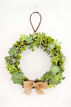 How To Make a Succulent Wreath — Apartment Therapy Tutorial