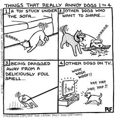 Things that really annoy dogs Cute Funny Animals, Funny Dogs, Dog Jokes, Dog Humour, Dog Funnies, Dachshund Humor, Cartoon Dog, Dog Cartoons, Crazy Dog Lady