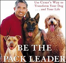 Cesar Millan, host of National Geographic Channel's