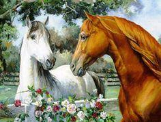 Фотографии красивых лошадей, картинки и рисунки коней