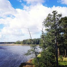 Missing Estonia and Latvia #vacation #estland #Estonia #latvia #holidays
