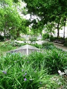 Canal St. Martin in 10th Arrondisement in Paris Travel Expert, Parcs, America, Flowers, Gardens, Royal Icing Flowers, Flower, Florals, Usa