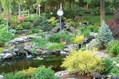 BEST YARD WINNERS: See how this couple turned their typical, flat suburban backyard into an enchanting destination with a 16-by-22-foot pond filled with koi and an abundance of colorful, textured flora.