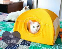 DiY cat tent with T-Shirt