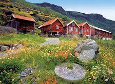 Am Ufer der Fjorde