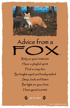 """Have a Playful Spirit."" Love Advice from a Fox."