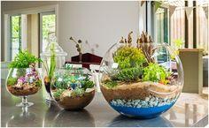 Teraryum bahçesi yapmak için gerekli malzemeler