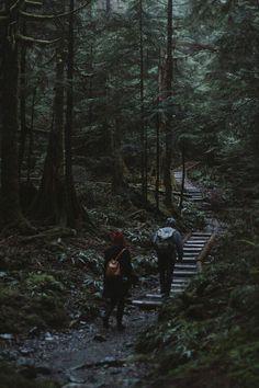 Самое лучшее на свете- лес