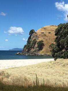 Mataora Bay, Near Waihi, North Island, New Zealand