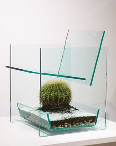 Cactus chair by Deger Cengiz. Visually challenging and interesting glass chair with cactus insert. Art Furniture, Glass Furniture, Furniture Design, Funny Furniture, Acrylic Furniture, Glass Chair, Glass Cactus, Cactus Cactus, Chair Parts