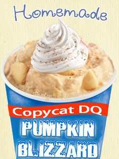 Pumpkin Pie Blizzard - We highly recommend!