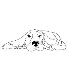 How to Draw a Cocker Spaniel | Fun Drawing Lessons for Kids & Adults