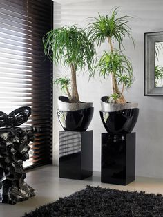 Are you looking for plants and planters similar to this? ...A little bit different... Get in touch to request a brochure or discuss exactly what you are looking for, it's more than likely that we'd supply it! See our other live plants or give us a call and we'd be more than happy to chat.