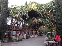 The Vineyard Farmer's Market: http://www.vineyardfarmersmarket.com/ http://www.bryansouza.com/