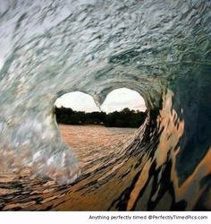 Tunnel of Love | Perfectly Timed Pics