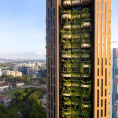 "Heatherwick Studio has unveiled a 20-storey residential skyscraper in Singapore, which was designed to be ""a counterpoint to ubiquitous glass and steel towers"". Thomas Heatherwick, Elevator Design, Vida Natural, Lush Garden, Architectural Digest, Architectural Elements, Architecture Design, Biophilic Architecture, Lush"