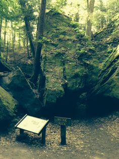 The Wedge Rock on Trail 3 at Turkey Run State Park (May, 2014)